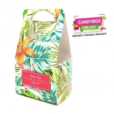 CANDYBOX (WARNA) Album 3
